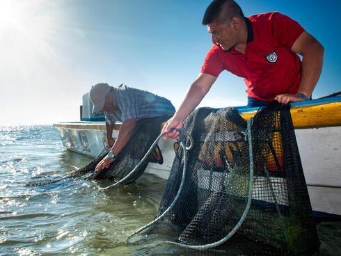 pomada fishermen Antonio Busiello WW290527