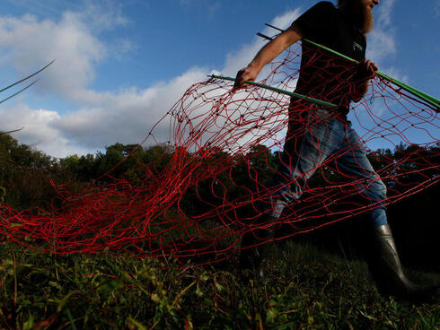 Two men carry red fencing across a grassy landscape