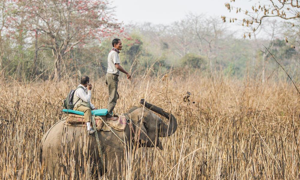 Rhino scout team in Chitwan National Park