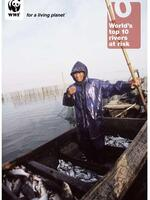 World's Top 10 Rivers at Risk  Brochure
