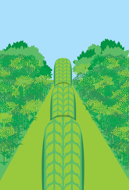 Illustration of tires in a forest