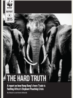 The Hard Truth: a report on how Hong Kong's ivory trade is fueling the African elephant poaching crisis Brochure