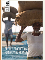 Better Production for a Living Planet Brochure