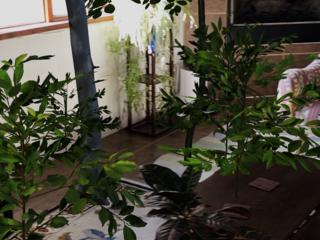 a screenshot of the WWF Forest App being used with a forest appearing in a living room space