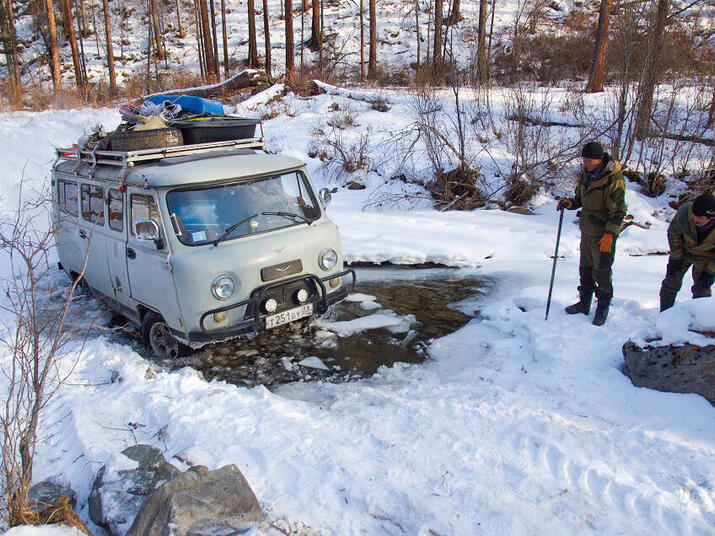 snow leopard obstacles DBarashkov