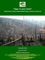 Tiger in Your Tank? Brochure