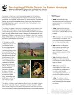 Tackling Illegal Wildlife Trade in the Eastern Himalayas Brochure