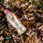 washed up plastic WW275056 Greg Armfield