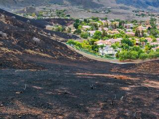 A scorched hillside after a wildfire leading up to a suburban neighborhood untouched by the fire