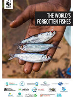 The World's Forgotten Fishes Brochure